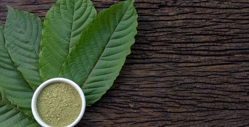 The Way To Create Your Product The Ferrari Of Greatest Kratom Vendors